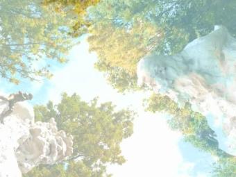 In a Landscape, after John Cage, op. 36 n.º 1